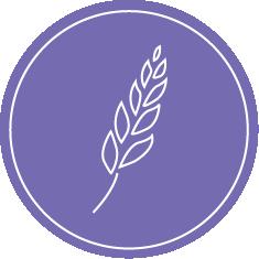 victanis-secteur-agroalimentaire-2
