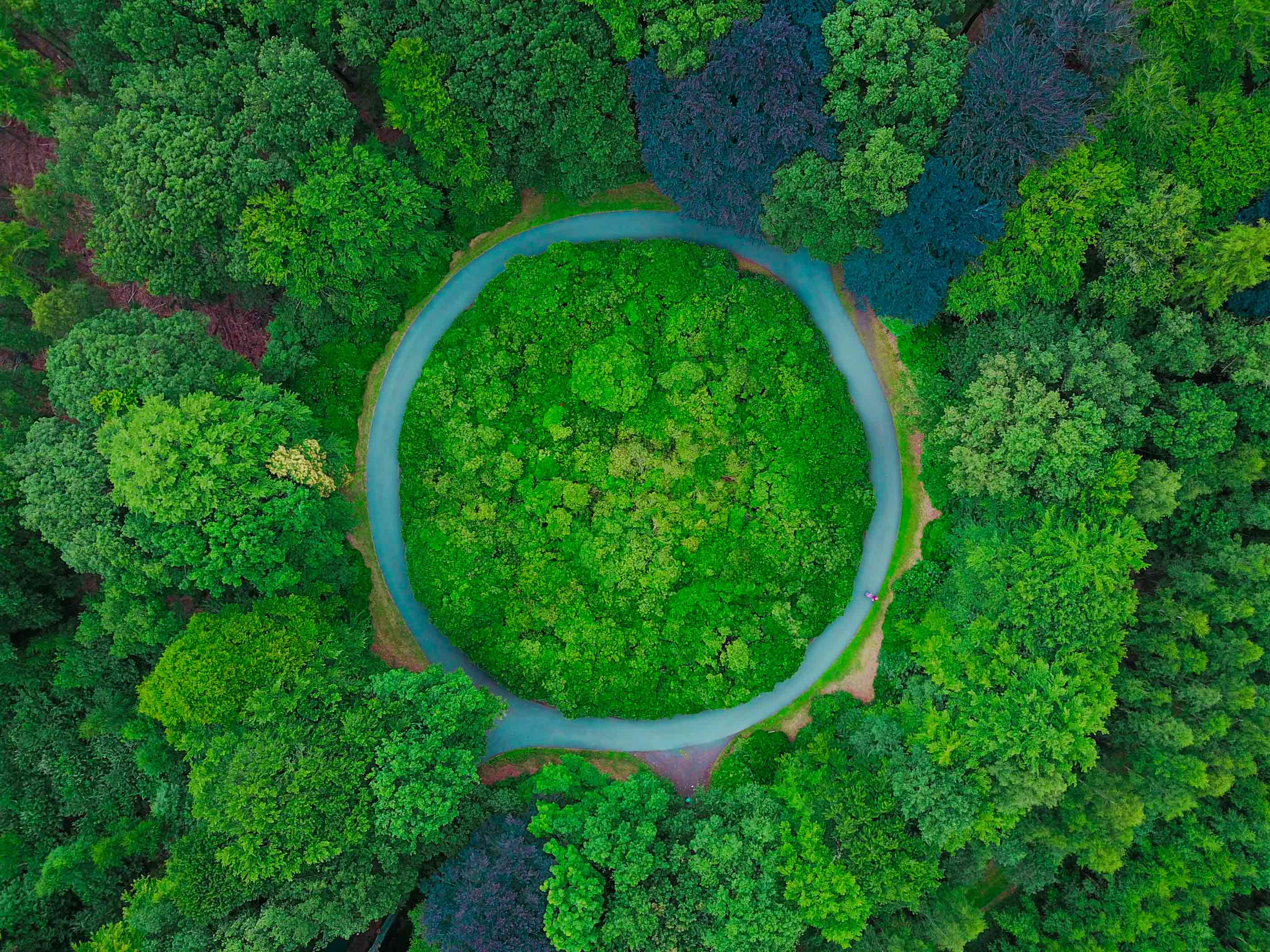 circular-economy-automotive-industry